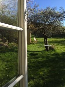 kig til haven